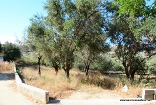 (For Sale) Land Plot wIthin Settlement || Cyclades/Naxos Agios Arsenios - 301Sq.m, 28.000€