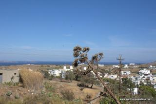 (For Sale) Plot within Settlement || Cyclades/Naxos Vivlos - 800Sq.m, 110.000€
