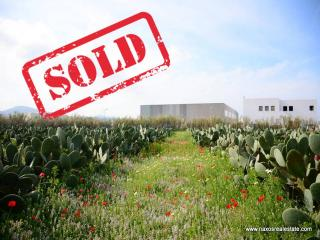 (SOLD !!!) Land Agricultural Land  || Chora Naxos / Cyclades - 4.220 sq.m., 200.000€
