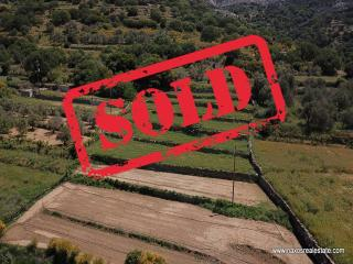 (For Sale) Land Agricultural Land  || Cyclades/Naxos Moni - 4000 Sq.m, 20.000€